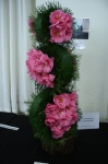 Camellias2
