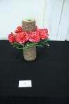 Camellias5