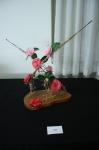 Camellias6