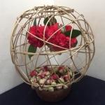 Camellias go contemporary2