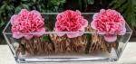 Camellias go contemporary8
